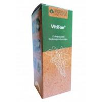 VitiSan 100 g